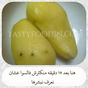 نبشر البطاطس